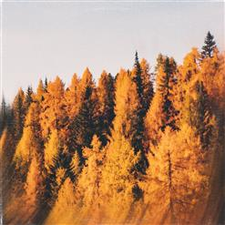 Tunes For Fall